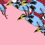 Olenna  Mokliak, War Birds in Pink