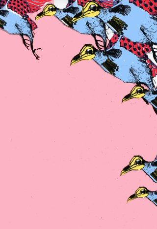 Olenna  Mokliak War Birds in Pink art for sale
